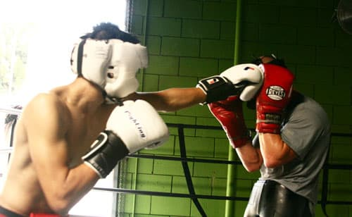 Art of Light Punches