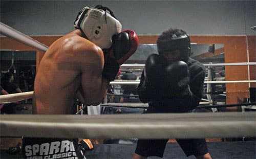 Fight Training Advice