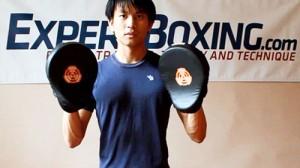 Boxing Focus Mitt Training