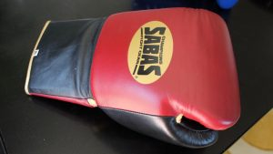 Sabas Boxing Gloves Review (UPDATED 2018)