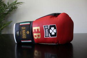 Di Nardo Boxing Gloves Review